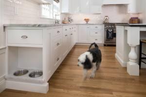 Pet Friendly Kitchen