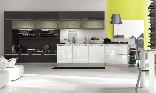 Wall Storage and Cabinets Kitchen Design - Eurolife Sydney